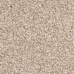 Timeless Designs Allure, Tan Lines Carpet