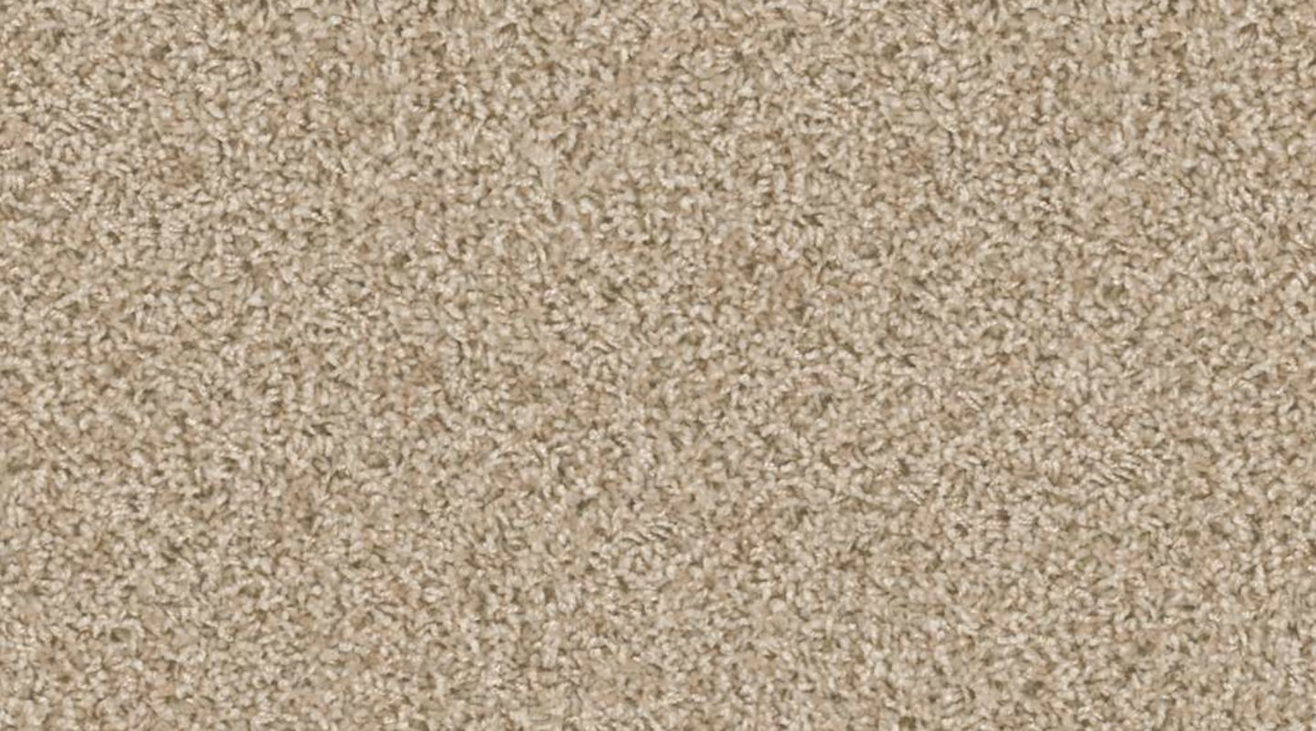 Shaw Floorigami Carpet Diem, Canvas Carpet Tile