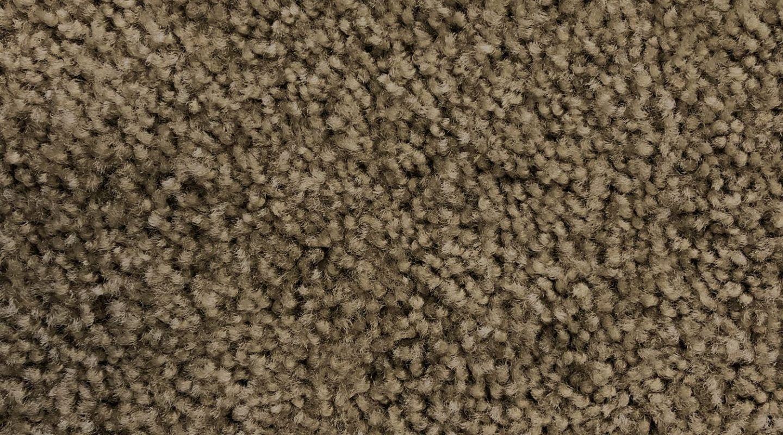 Shaw Eco Choice Ii Buckskin Carpet America S Floor Source