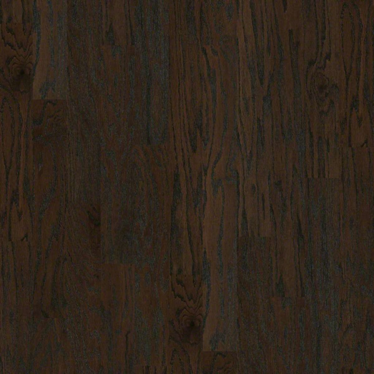 "Hardwood   Shaw Epic Plus ALBRIGHT OAK 5"" Coffee Bean   Flooring Liquidators"
