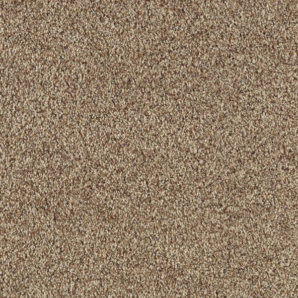 Mohawk Timeless Renovation Pebble Path Collection