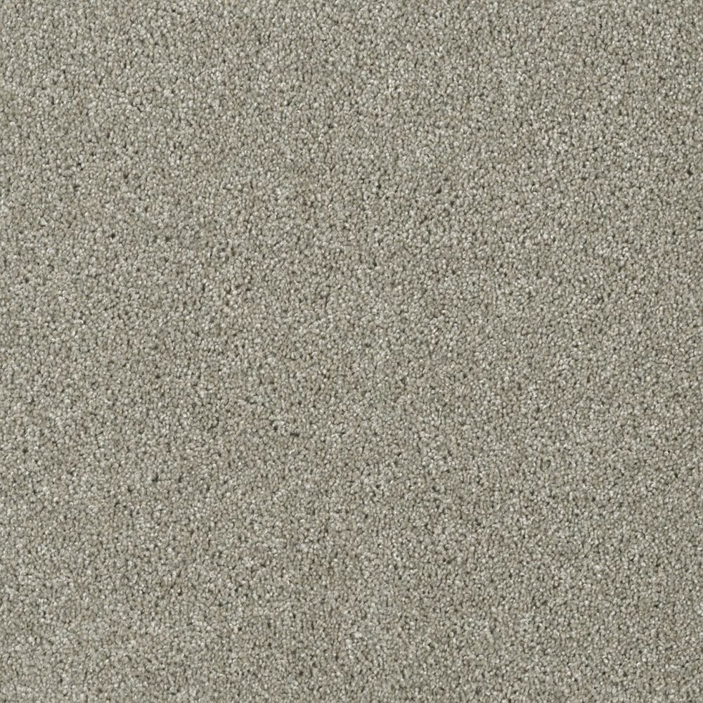 Dream Weaver Sensational Barely Beige 7450_703