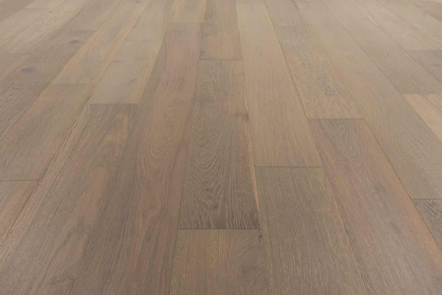 Provenza Affinity Collection Obsession PRO2306