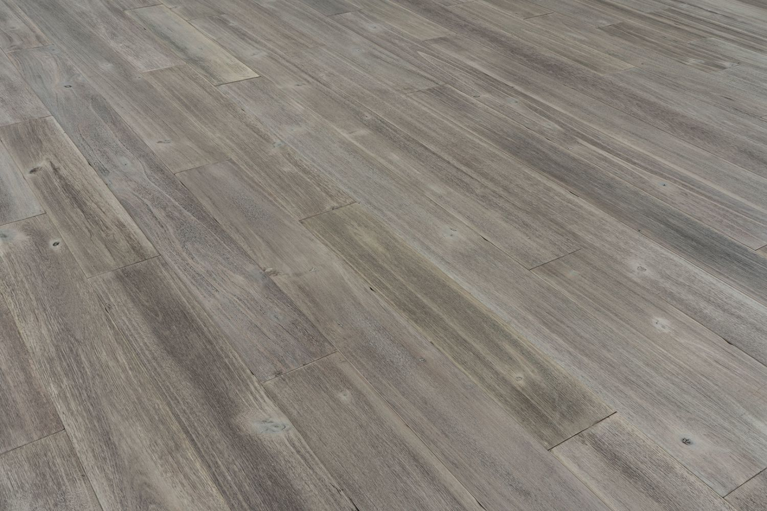Provenza Modern Rustic Collection Sand Dollar PRO1407