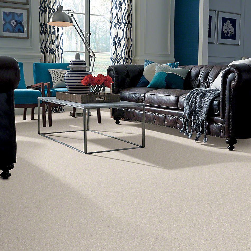 Shaw Floors Shaw Flooring Gallery Highland Cove III 12 Snow 00100_5223G