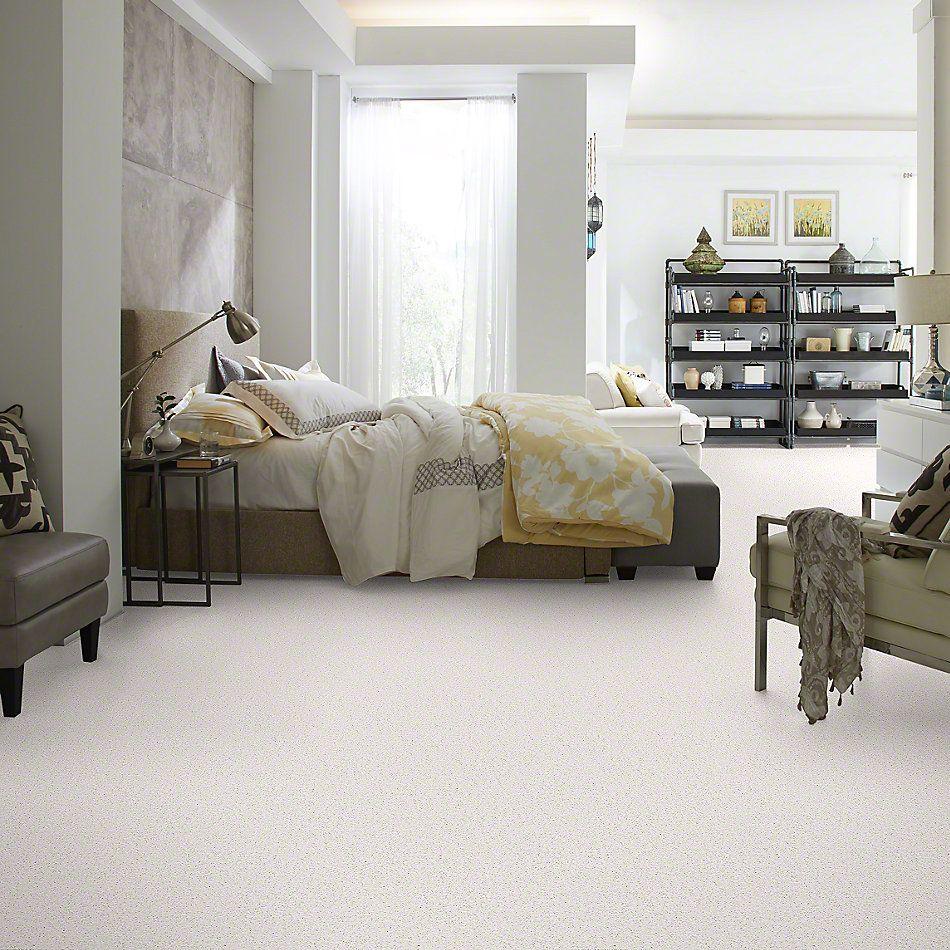 Shaw Floors Full Court 15′ Halo 00100_52Y82