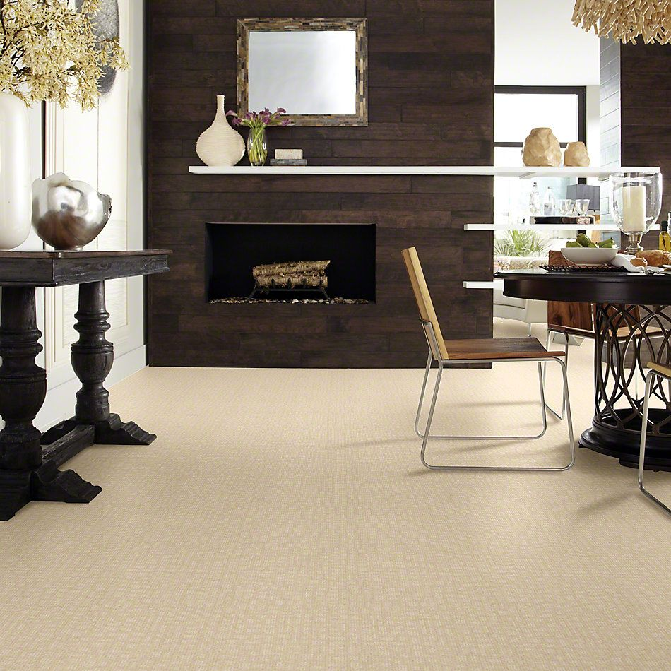 Shaw Floors Shaw Flooring Gallery Set The Stage Winter White 00100_5515G