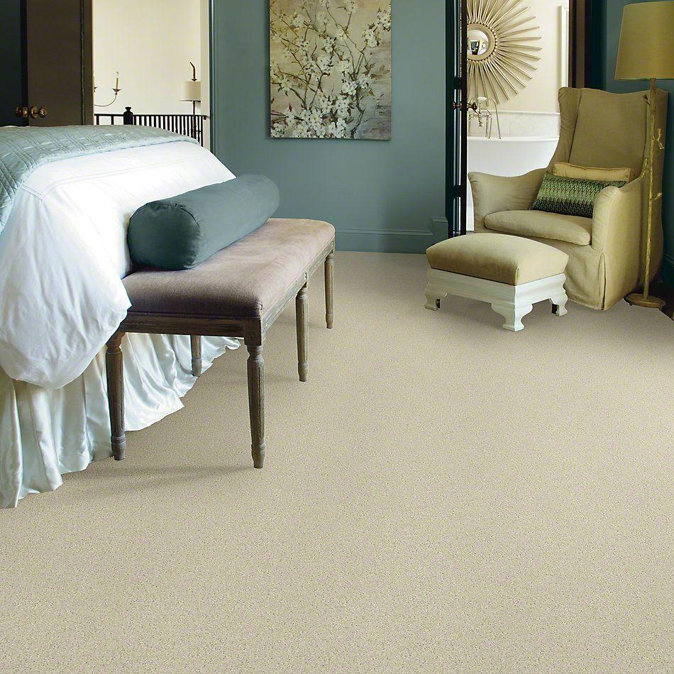 Shaw Floors Shaw Design Center Beautifully Simple II 15′ Fresco 00100_5C752