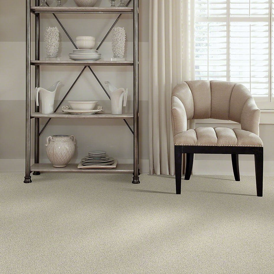 Shaw Floors Enduring Comfort I China Pearl 00100_E0341