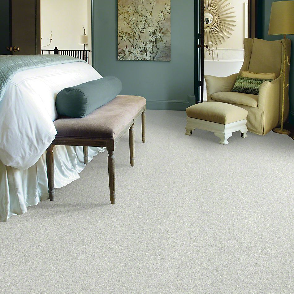 Shaw Floors Simply The Best Infallible Twinkle 00100_EA693