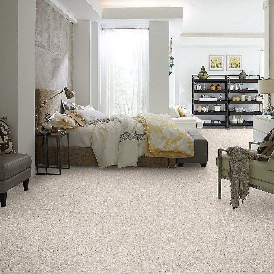 Shaw Floors Shaw Flooring Gallery Invite Possibility II Snow 00100_Q315G