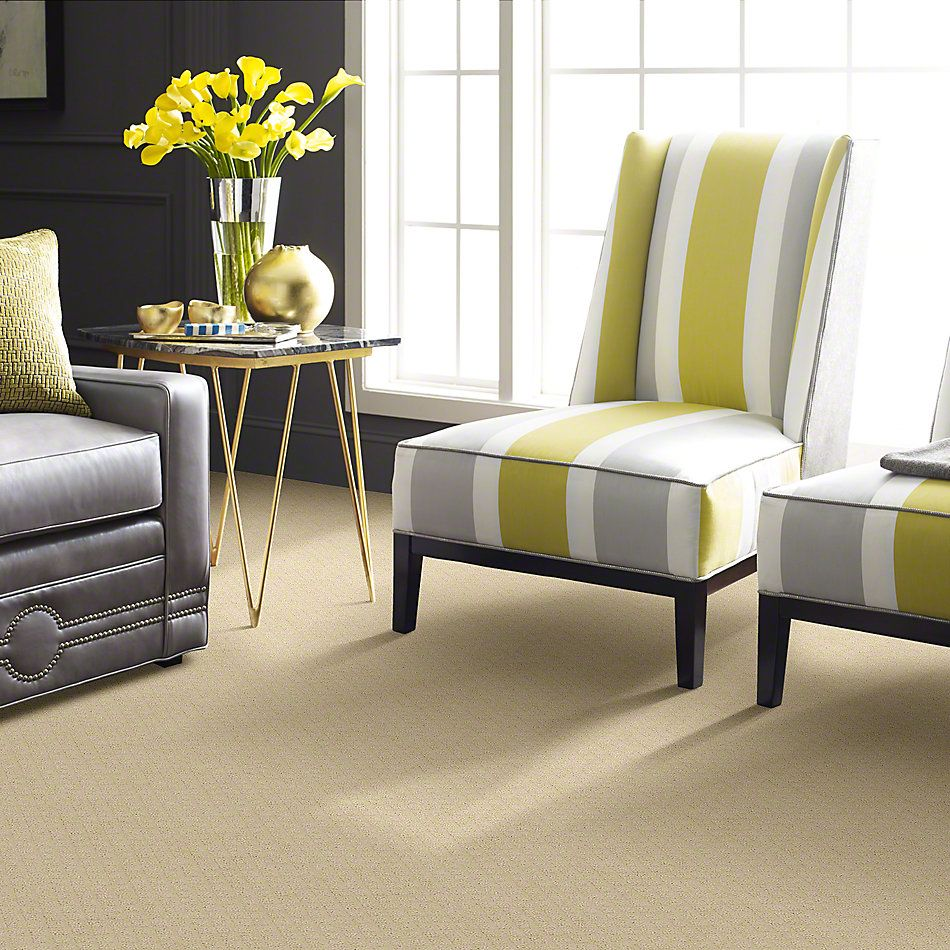 Shaw Floors Pace Setter Winter White 00100_E0527