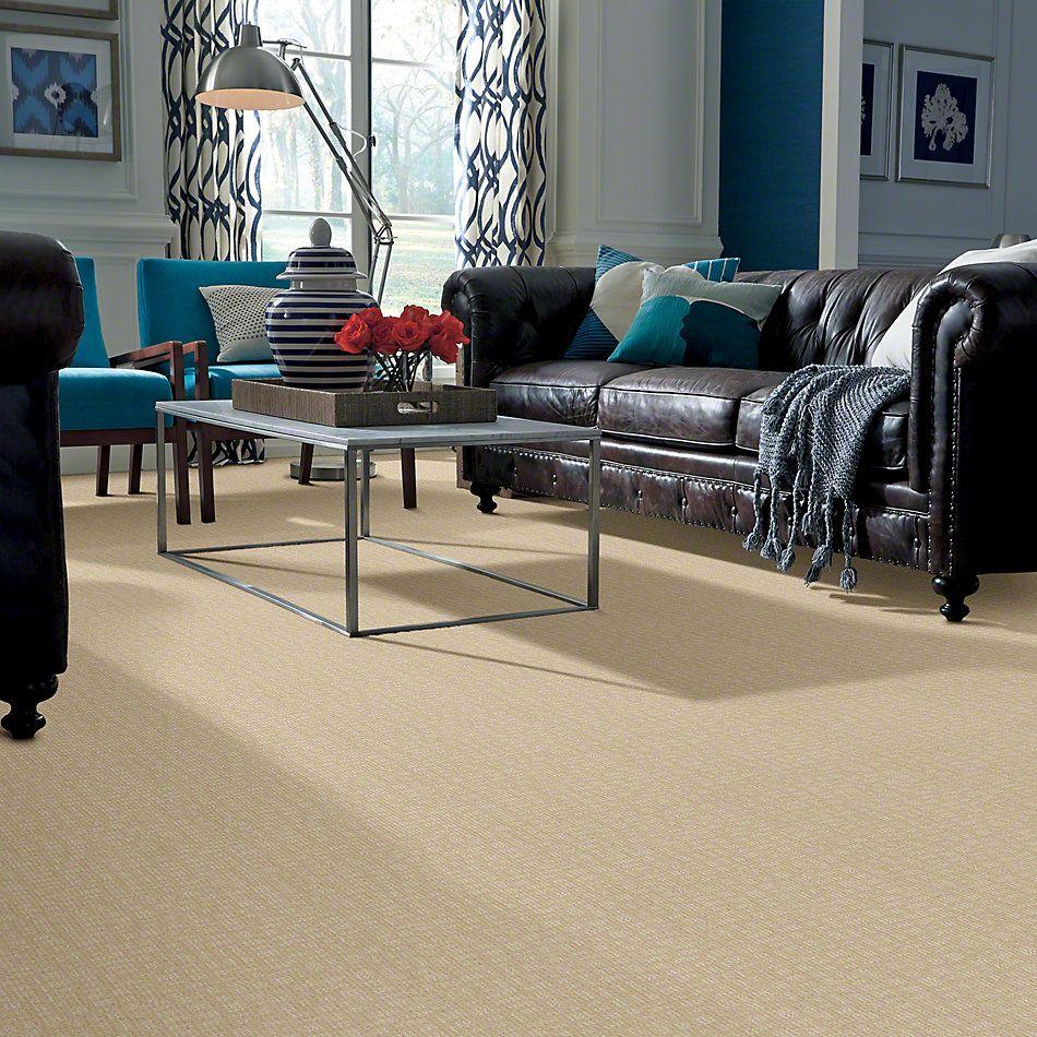 Shaw Floors Instant Impact Winter White 00100_E0530