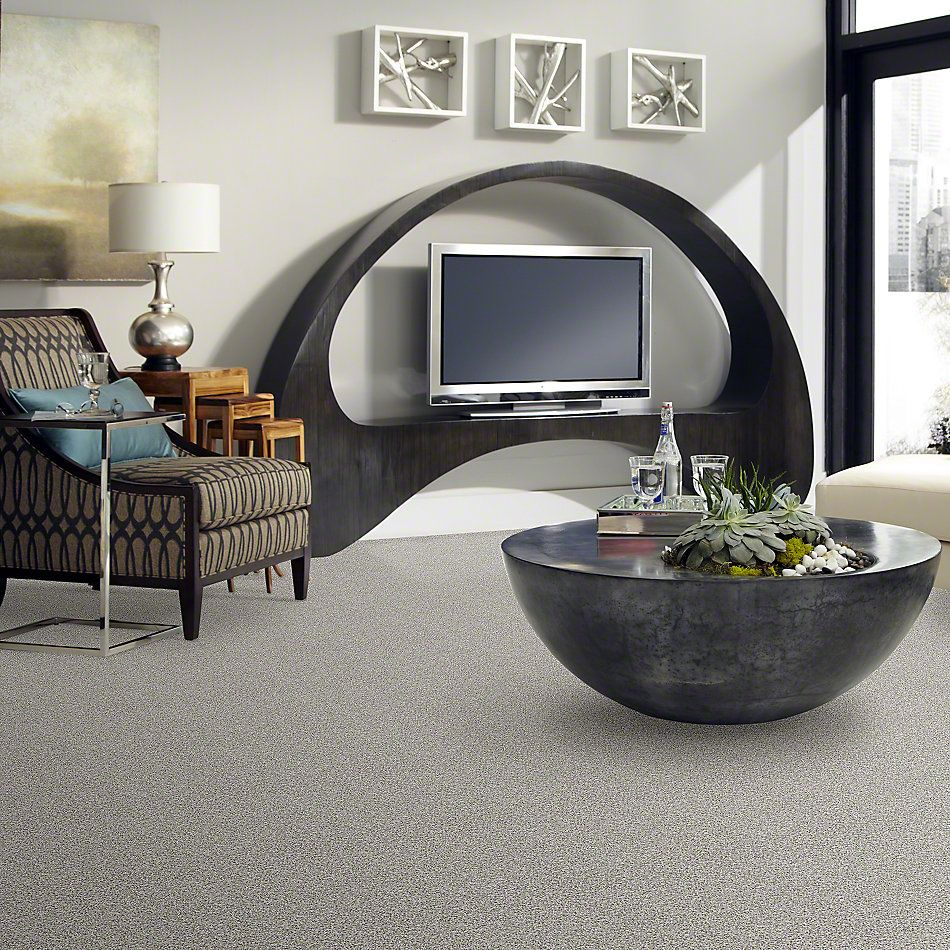 Shaw Floors Walk With Me T Net Sugar Cube 00100_E0774