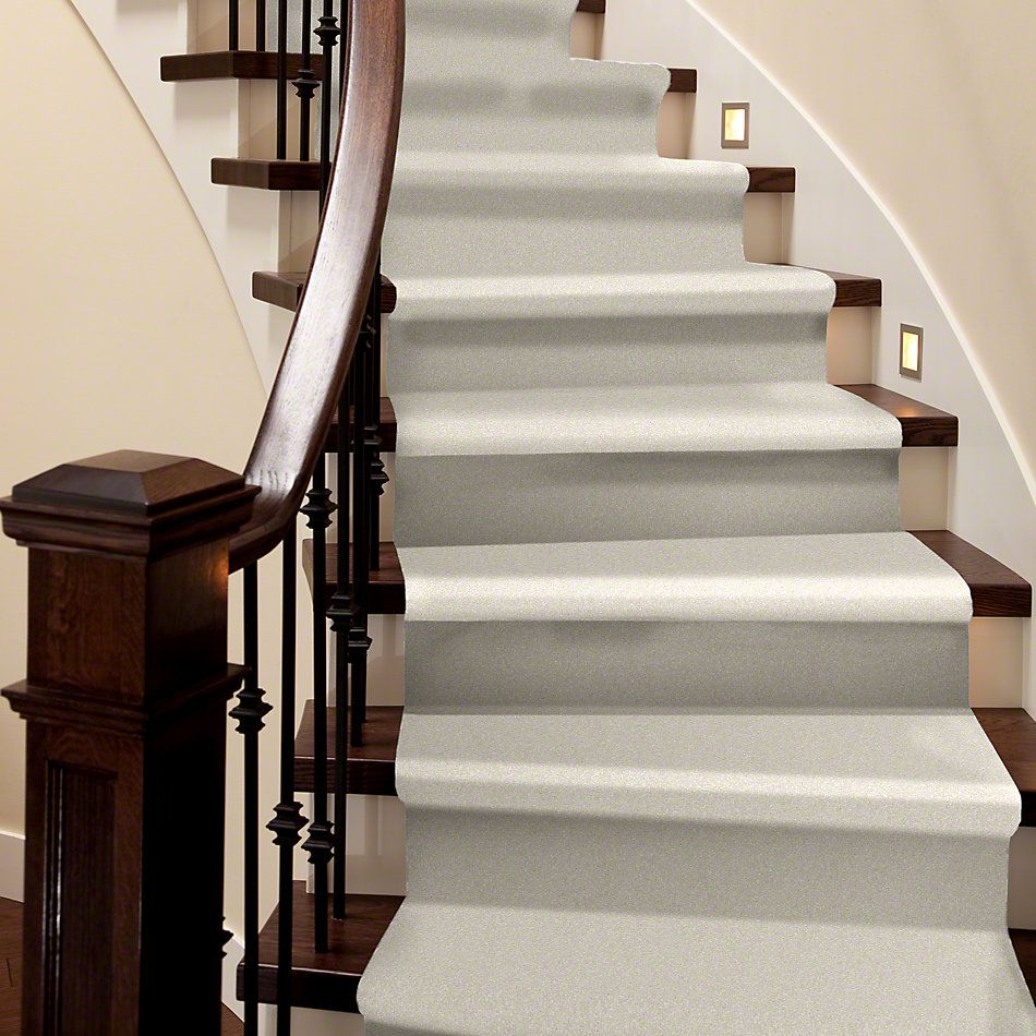 Shaw Floors Value Collections You Know It Net Royal Silk 00100_E0927