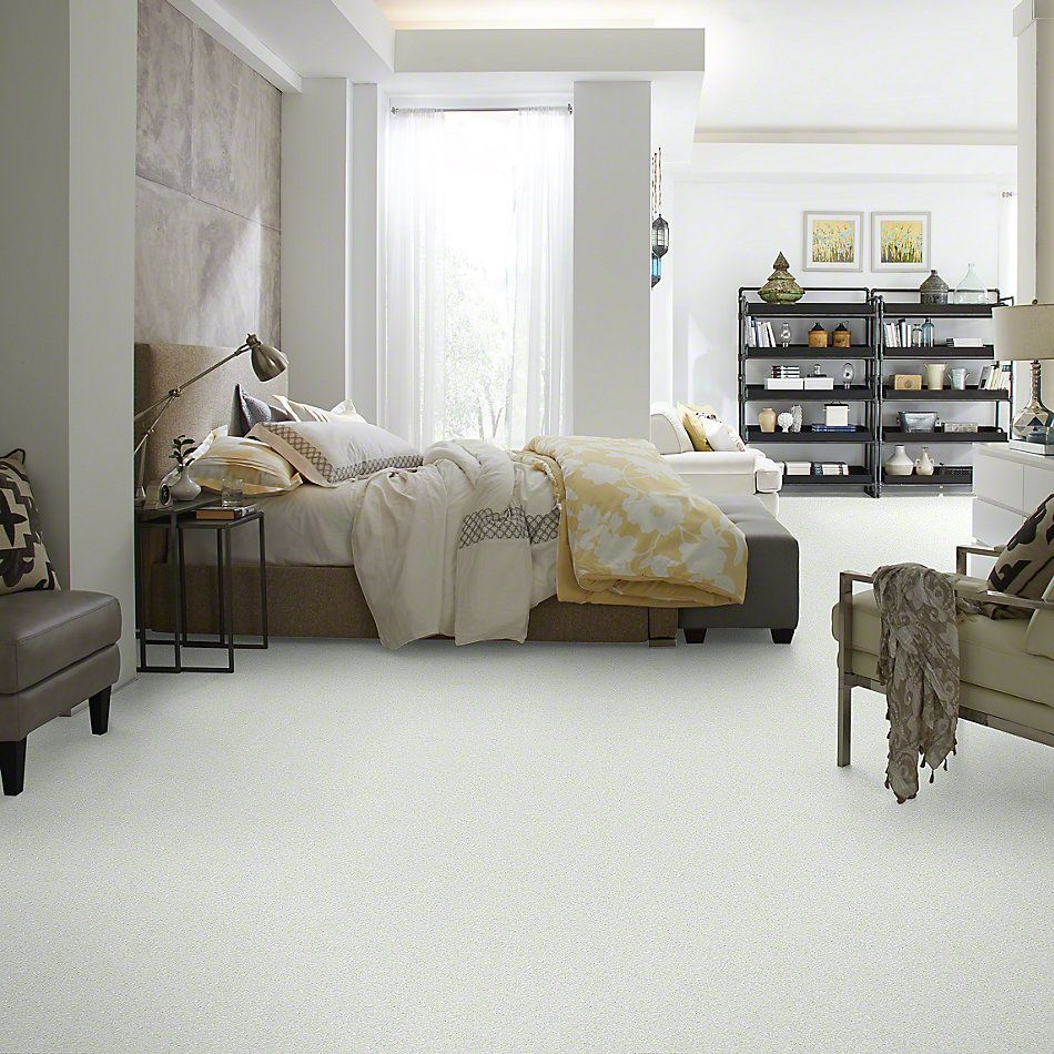 Shaw Floors Value Collections Gran Diego Net Twinkle 00100_E0960