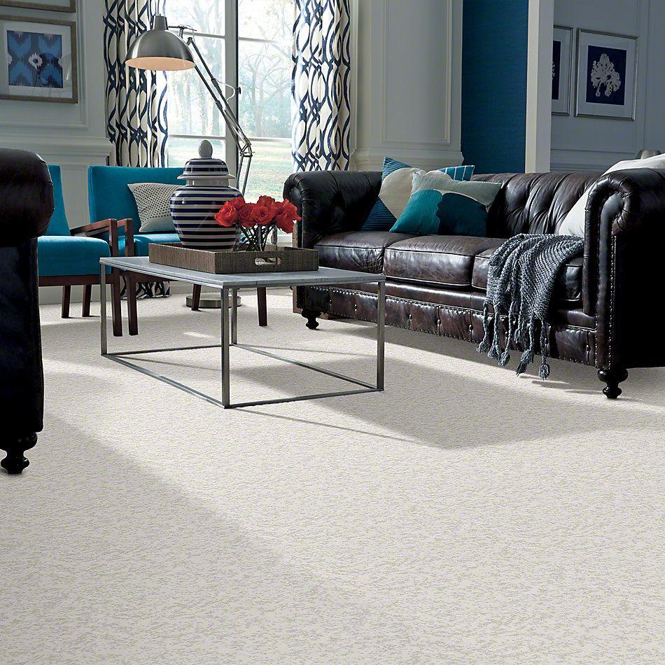Shaw Floors Trend Setter Serene 00100_E9343