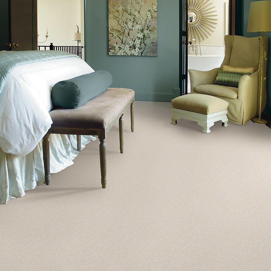 Shaw Floors Value Collections Passageway 3 Net Snow 00100_E9377