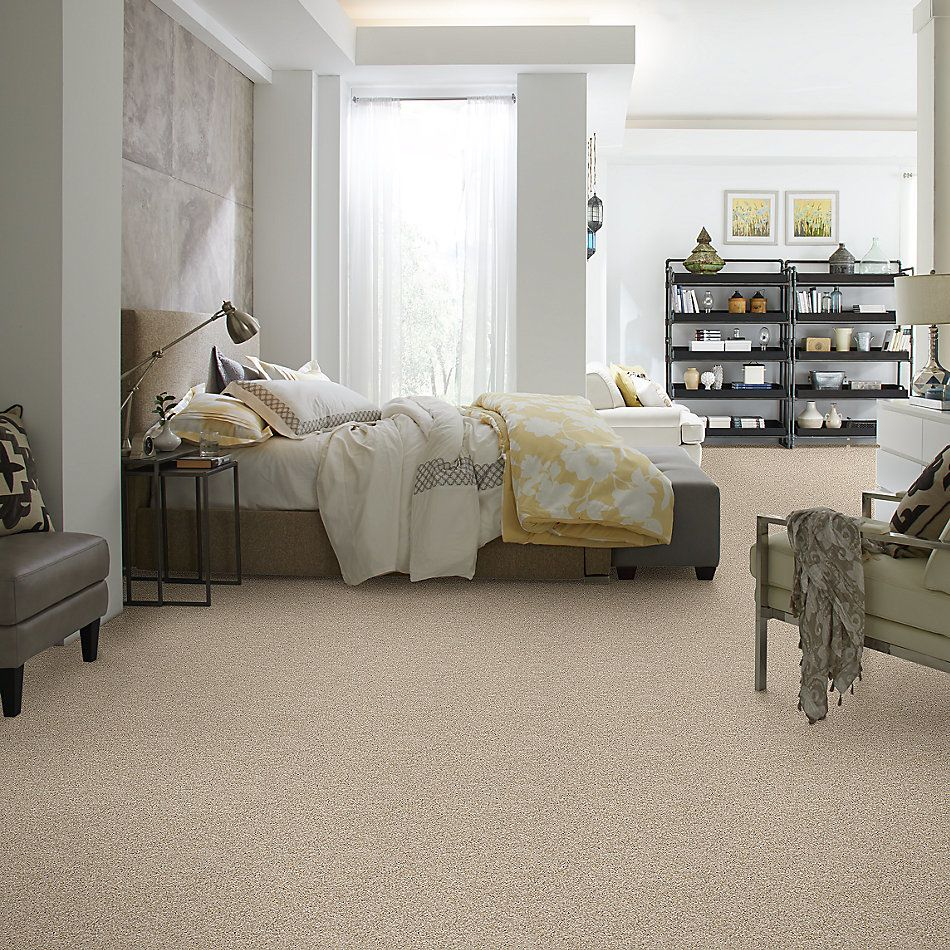 Shaw Floors Value Collections Work The Color Net Biscotti 00100_E9458