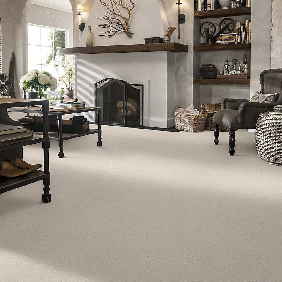 Shaw Floors Value Collections Passageway II 15 Net Snow 00100_E9621
