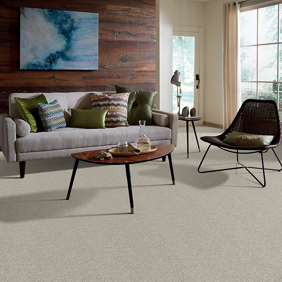 Shaw Floors Value Collections All Over It I Net Oatmeal 00100_E9890