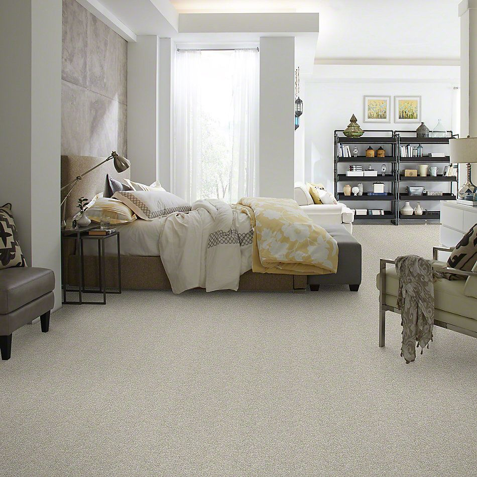 Shaw Floors Value Collections All Over It II Net Oatmeal 00100_E9891