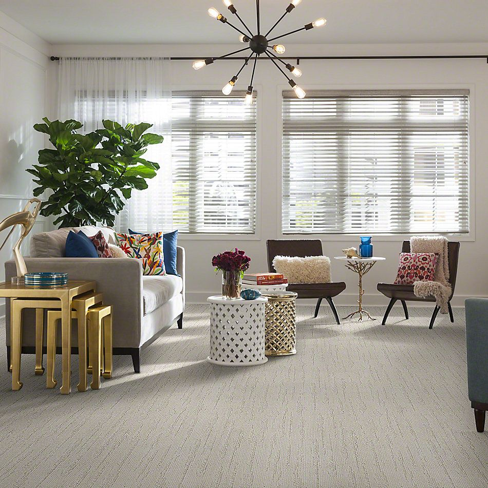 Shaw Floors Value Collections All The Way Net Milk White 00100_E9892