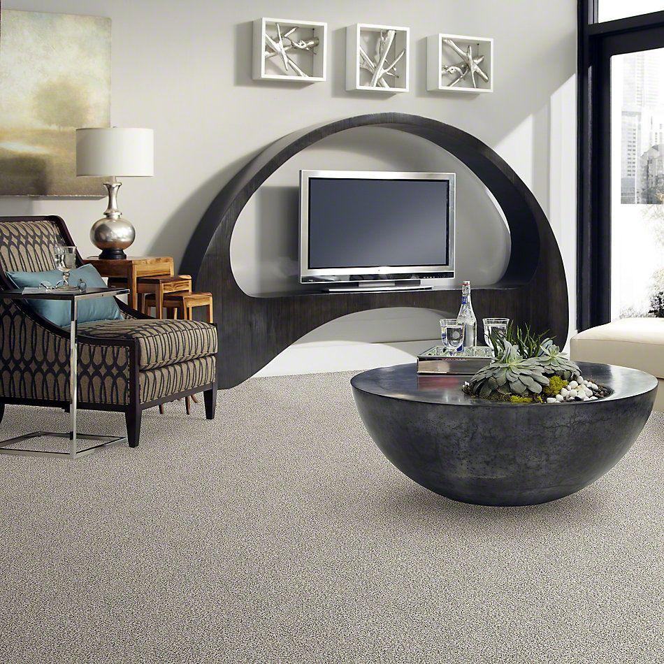 Shaw Floors Value Collections All Set II Net Quartz 00100_E9895