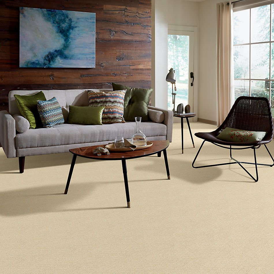 Shaw Floors Home Foundations Gold Urban Oasis Winter White 00100_HGJ70