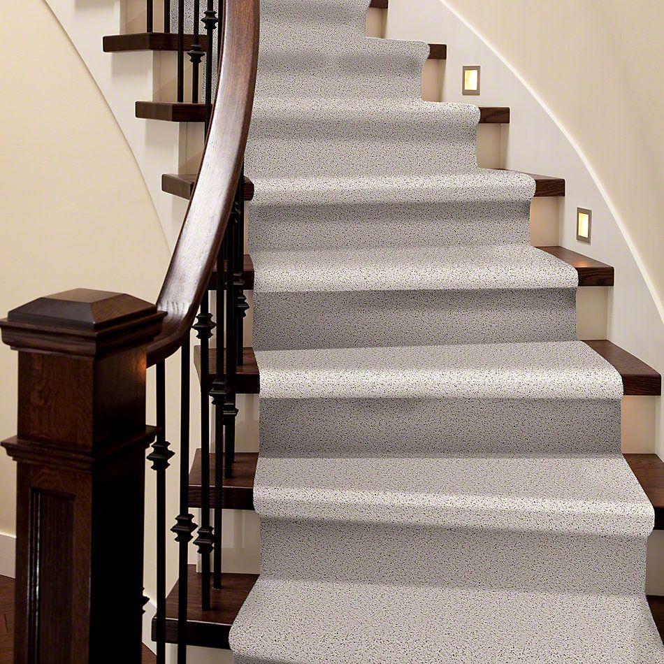Shaw Floors Flourish Fine Lace 00100_Q4206
