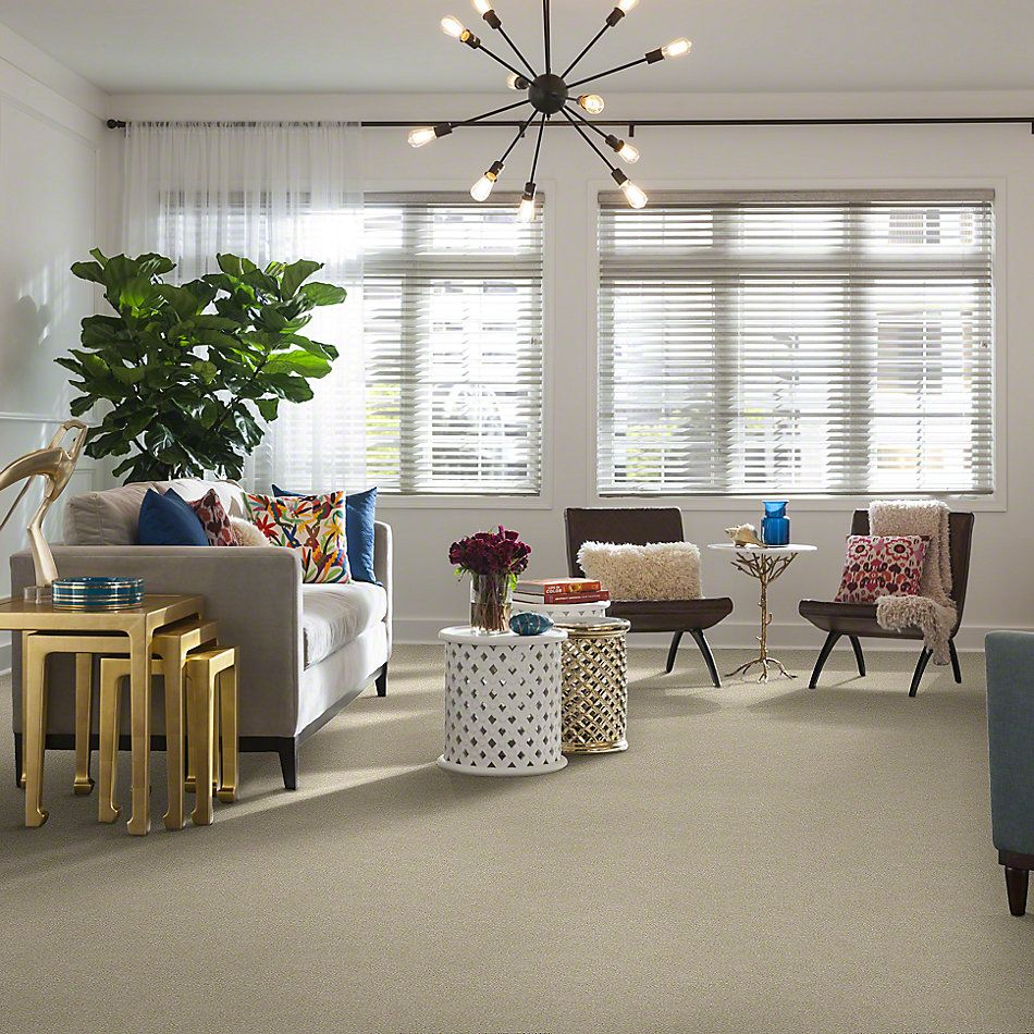 Shaw Floors Roll Special Xv411 Dove Wing 00100_XV411