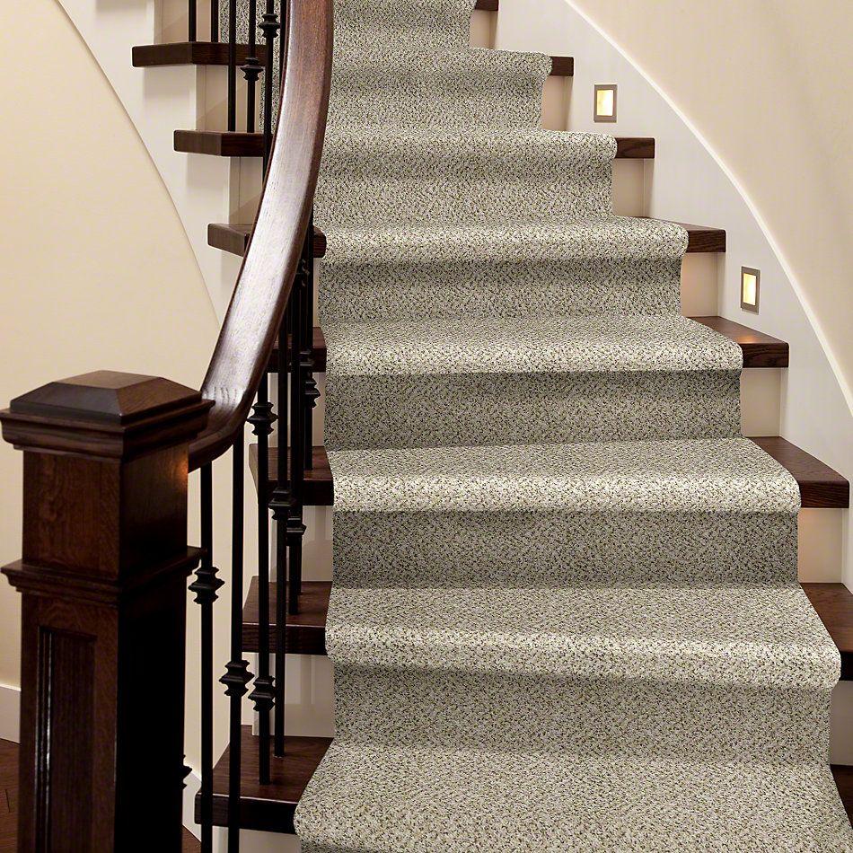 Shaw Floors Roll Special Xv483 White Wash 00100_XV483