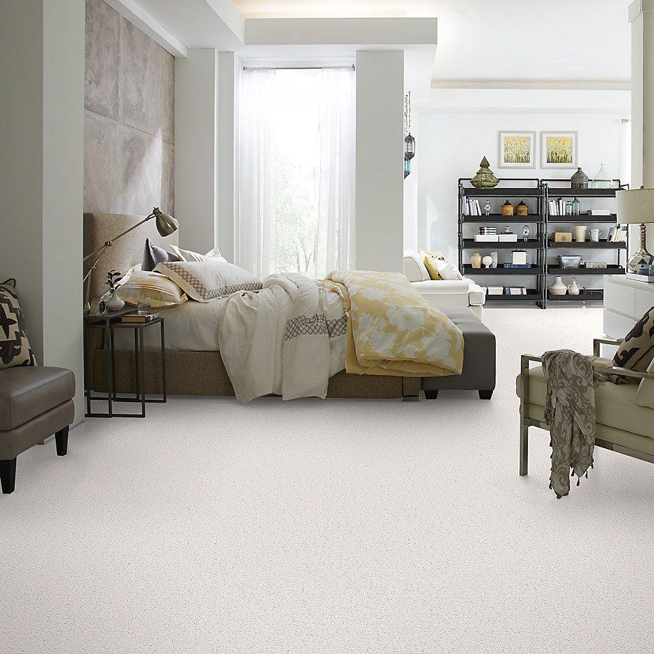 Shaw Floors Roll Special Xv866 Halo 00100_XV866