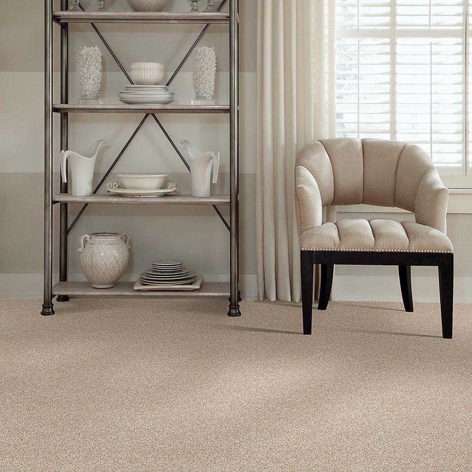 Shaw Floors Value Collections Xz141 Net Sand Castle 00100_XZ141