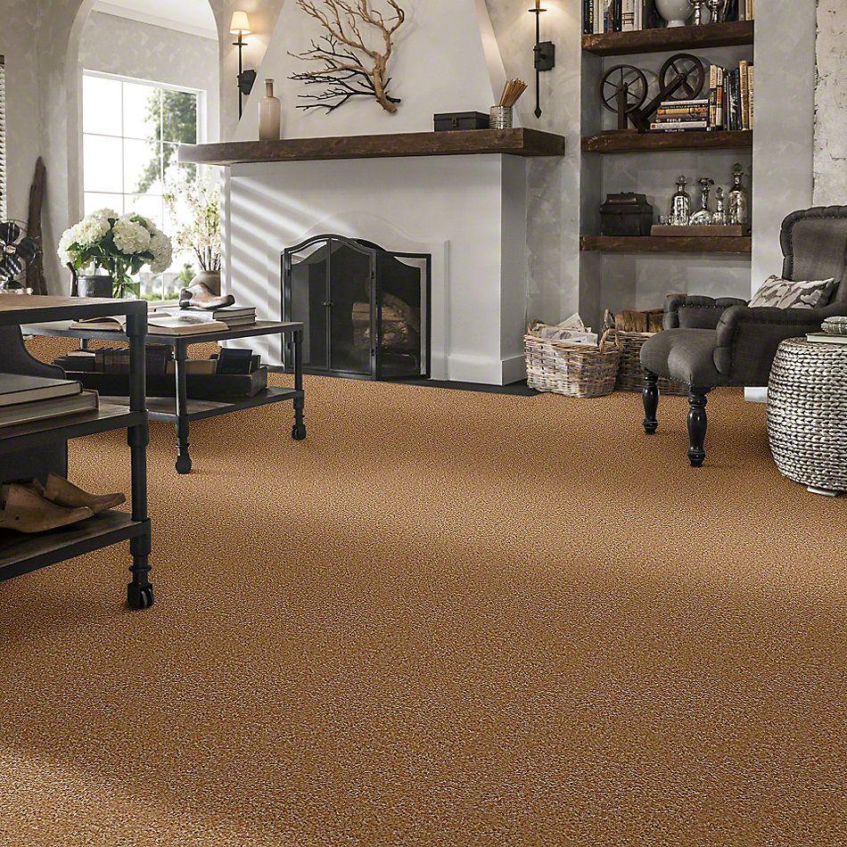 Shaw Floors SFA Kentfield Sisal 00101_52N22