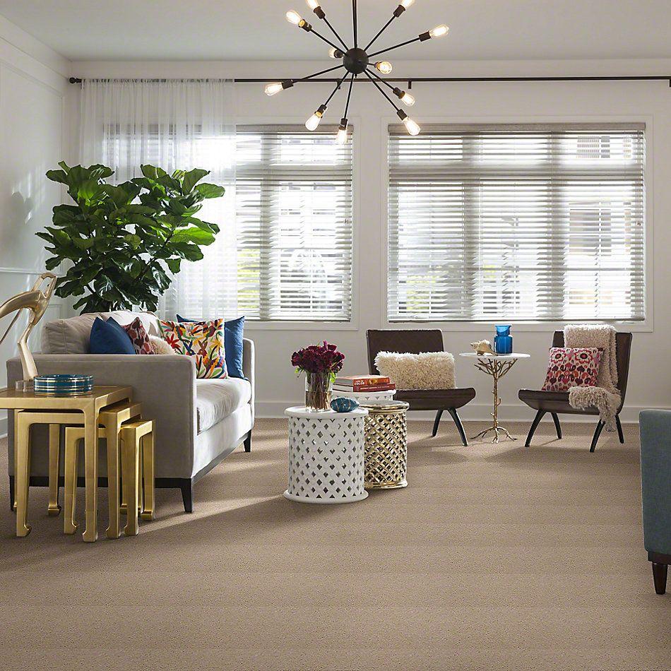 Shaw Floors Town Creek I 15′ Cream 00101_52V12