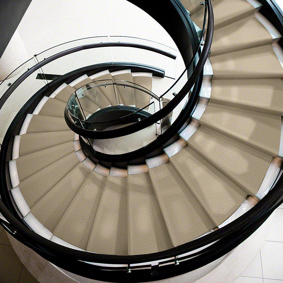 Shaw Floors Shaw Design Center Propel Linen 00101_5C733