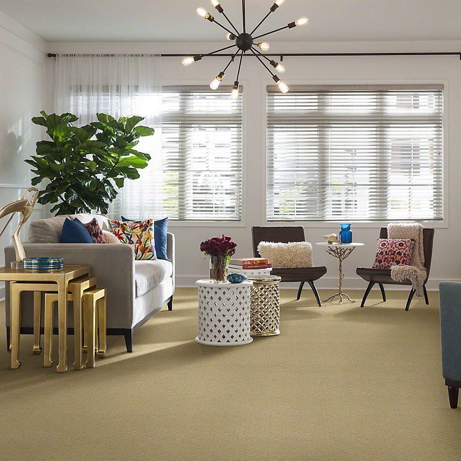 Shaw Floors Shaw Design Center New Venture Linen 00101_5C734