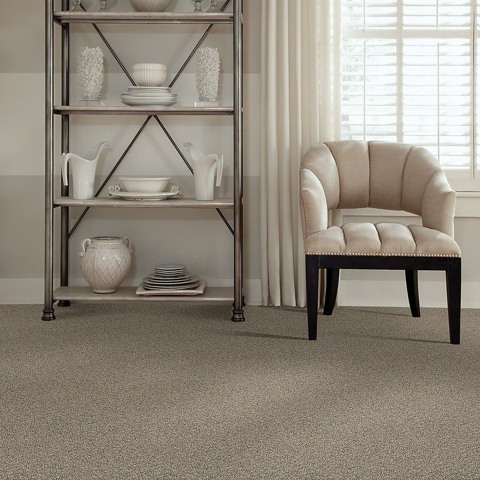 Shaw Floors Absolutely It Fairy Dust 00101_5E084