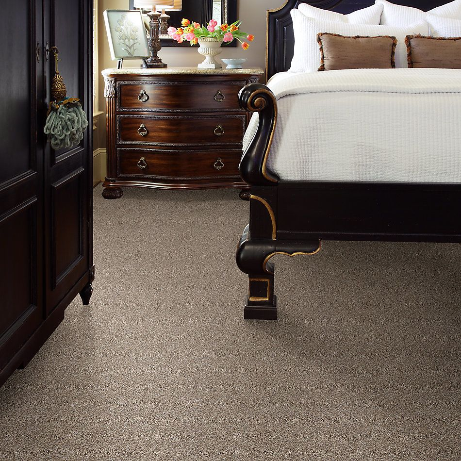 Shaw Floors Simply The Best After It II Neutral Ground 5E258_00101