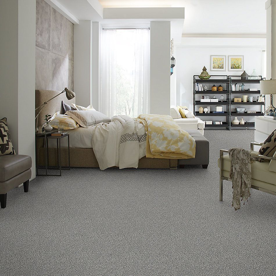 Shaw Floors Simply The Best Within Reach I Serene Still 5E259_00101