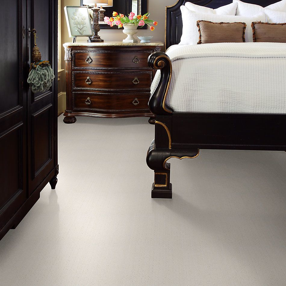 Shaw Floors Value Collections Essential Now Net Serene Still 00101_5E300