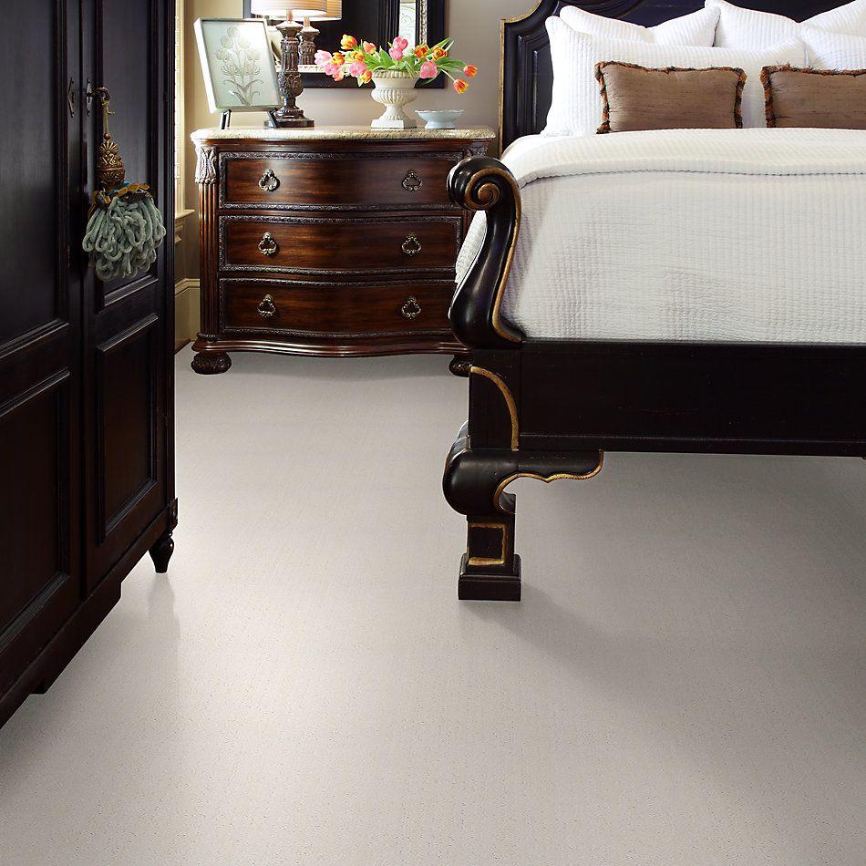 Shaw Floors Foundations Essential Now Net Serene Still 00101_5E300