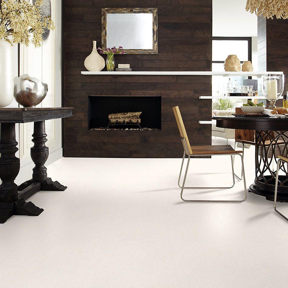 Shaw Floors Value Collections Mainstay Net Serene Still 00101_5E302