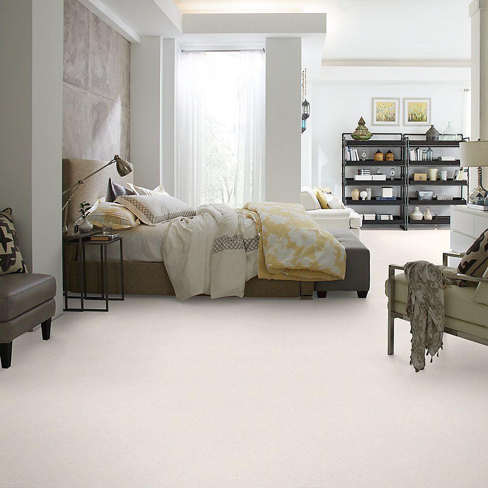 Shaw Floors Foundations Mainstay Net Serene Still 00101_5E302