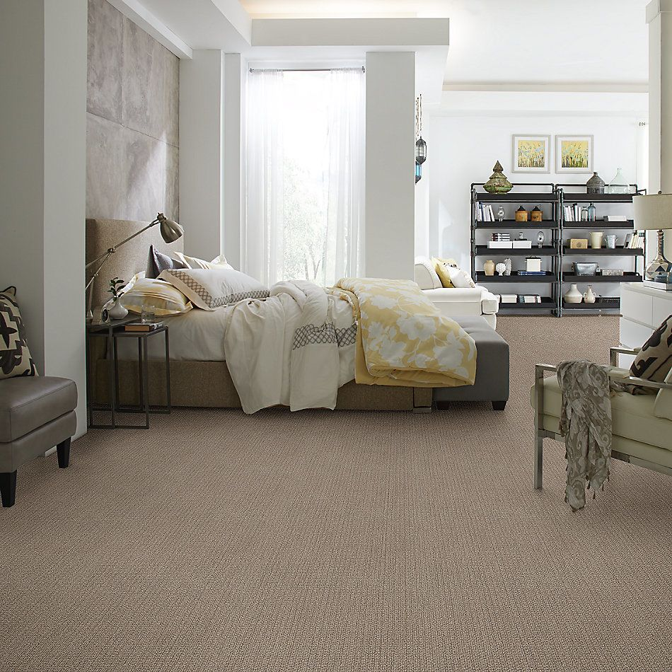 Shaw Floors Value Collections Stay Fit Net French Linen 00101_5E330