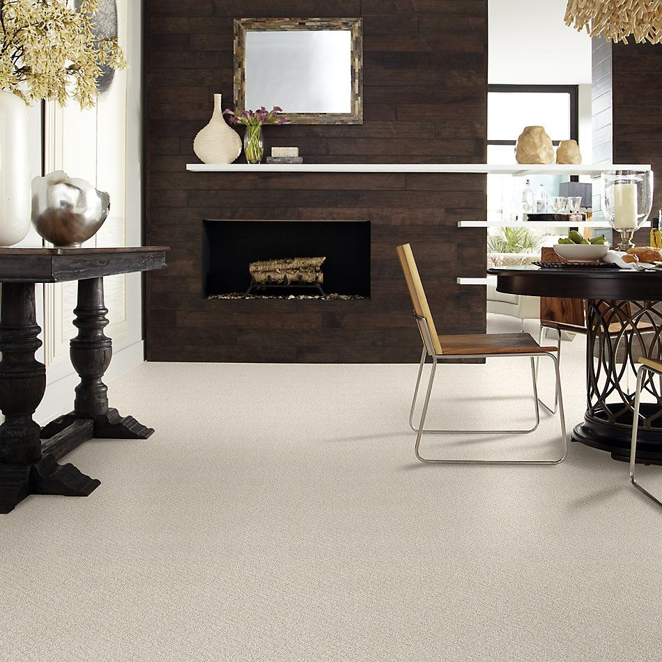 Shaw Floors Foundations Chic Shades Serene Still 00101_5E342
