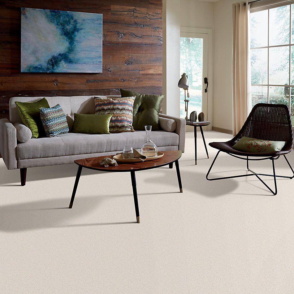 Shaw Floors Value Collections Sandy Hollow Cl II Net Mushroom 00101_5E510