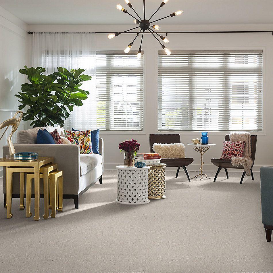 Shaw Floors Value Collections Sandy Hollow Cl Iv Net Mushroom 00101_5E512