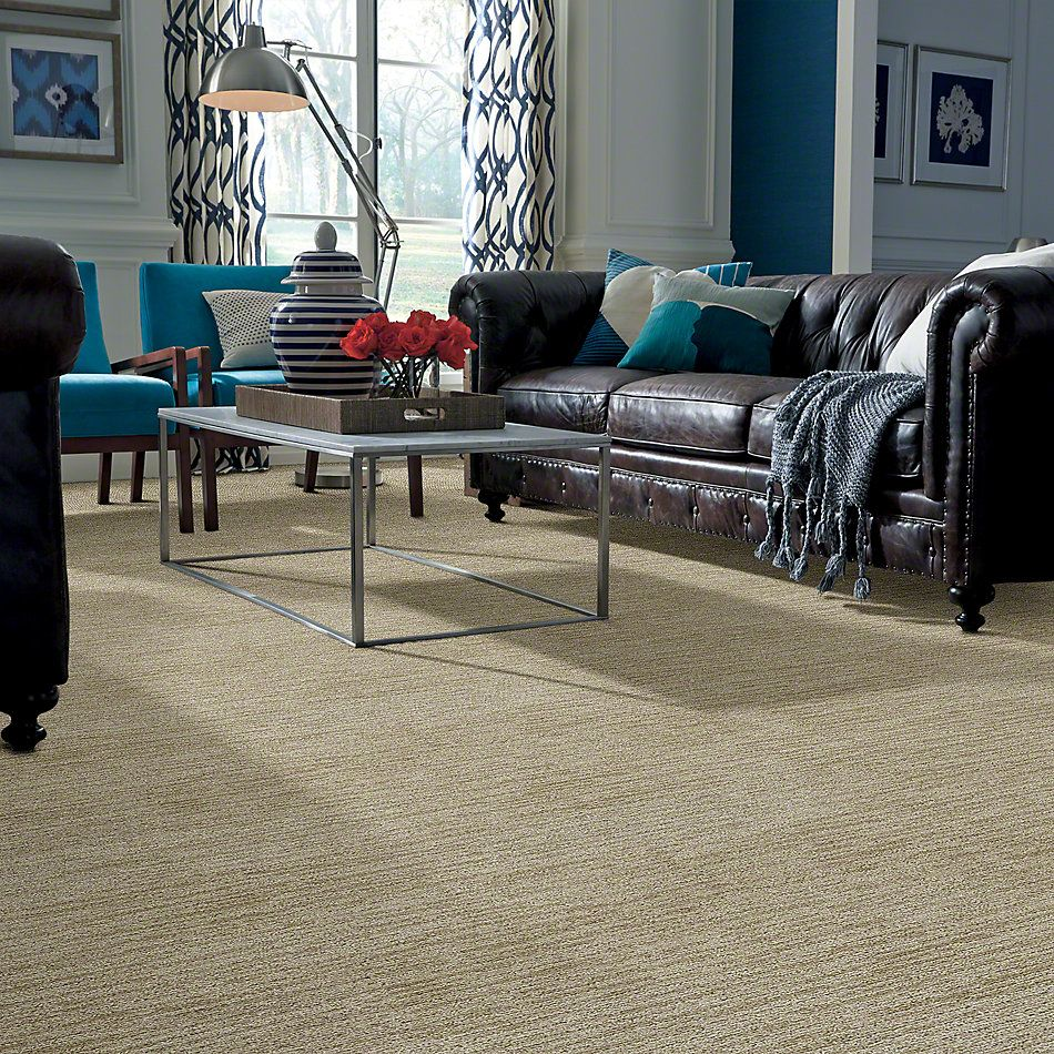 Shaw Floors Dynamic Vision Spice Cookie 00101_6E001